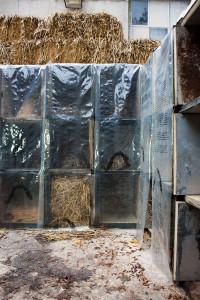 mycological_twist_installation3_10_2014